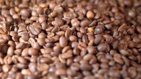 Plan rapproché des grains de café rôtis et parfumés bruns avec de la fumée aromatique banque de vidéos