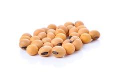 Plan rapproché des haricots de soja sur le fond blanc Images stock