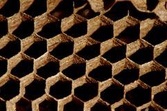 Plan rapproché des hexagones de nid de guêpe Photo stock