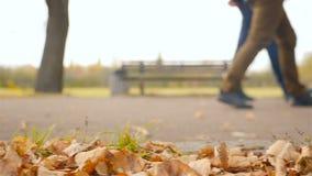 Plan rapproché des jambes Les hommes marchent en parc Mouvement lent clips vidéos