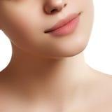 Plan rapproché des lèvres de la femme avec des valeurs maximales de concentration au poste de travail beiges naturelles de rouge  Image stock