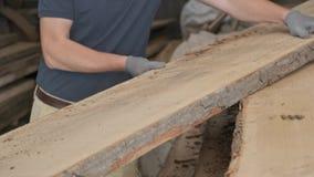 Plan rapproché des mains de charpentiers avec du bois de planche à l'atelier de travail du bois de menuiserie banque de vidéos