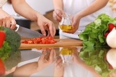 Plan rapproché des mains humaines faisant cuire dans la cuisine Mère et fille ou deux amis féminins coupant des légumes pour la s Photographie stock libre de droits