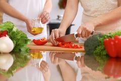 Plan rapproché des mains humaines faisant cuire dans la cuisine Mère et fille ou deux amis féminins coupant des légumes pour la s Photo libre de droits