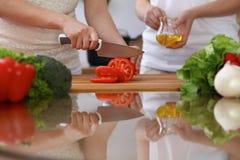 Plan rapproché des mains humaines faisant cuire dans la cuisine Tomate de coupe de mère et de fille ou de deux femelles pour la s Photo stock