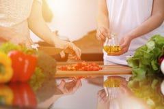Plan rapproché des mains humaines faisant cuire dans la cuisine Tomate de coupe de mère et de fille ou de deux femelles pour la s Photographie stock
