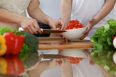 Plan rapproché des mains humaines faisant cuire dans une cuisine Amis ayant l'amusement tout en préparant la salade fraîche Végét Image libre de droits