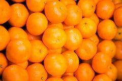 Plan rapproché des mandarines mûres image stock