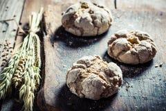 Plan rapproché des petits pains frais Image libre de droits