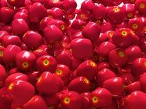 Plan rapproché des pommes mûres rouges d'isolement Illustration Libre de Droits