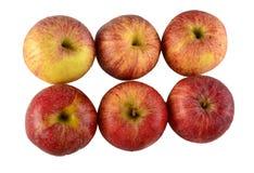 Plan rapproché des pommes rouges multiples photos stock