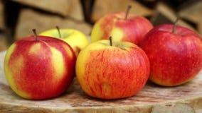 Plan rapproché des pommes sur tourner le plat en bois banque de vidéos