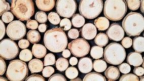 Plan rapproché des rondins d'arbre image libre de droits