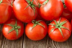 Plan rapproché des tomates fraîches et mûres images libres de droits