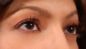Plan rapproché des yeux bruns de la femme attirante photographie stock libre de droits