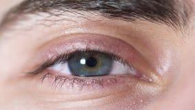 Plan rapproché des yeux humains Bel oeil de jeune homme avec l'élève se rétrécissant de la lumière Nuance grise et brune d'oeil h clips vidéos