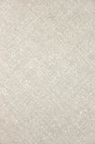Plan rapproché diagonal de toile gris-clair de texture Images libres de droits