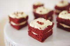 Plan rapproché du morceau sensible de petit gâteau de chocolat Photographie stock libre de droits