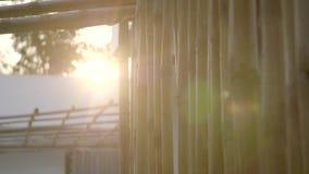 Plan rapproché en bambou de mur