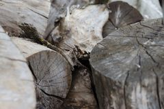 Plan rapproché en bois de rondins de vieille coupe grise images libres de droits