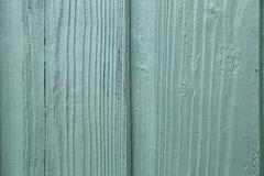 Plan rapproché en bois vert de grain Images stock