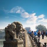 Plan rapproché en pierre de lion à Pékin photographie stock libre de droits