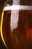 Plan rapproché en verre de bière Photos stock
