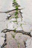 Plan rapproché endommagé de route Photos libres de droits
