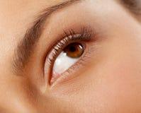 Plan rapproché femelle d'oeil images stock