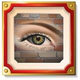 Plan rapproché femelle d'oeil dans le cadre Images libres de droits
