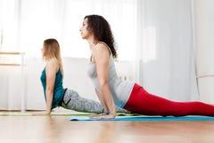 Plan rapproché flexible de deux beau filles en position de yoga de cobra image stock