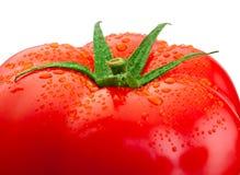 Plan rapproché frais supérieur de tomate et gouttes de l'eau d'isolement sur le blanc Images stock
