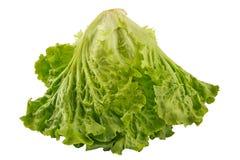 Plan rapproché frais vert de salade de laitue d'isolement sur le blanc avec le clippin Photographie stock