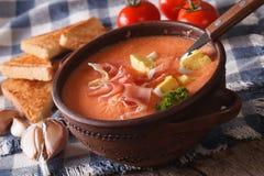 Plan rapproché froid espagnol de salmorejo de soupe dans une cuvette horizontal Photographie stock libre de droits