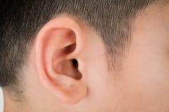 Plan rapproché humain asiatique d'oreille Images stock