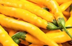 Plan rapproché jaune de poivrons de piment Photos stock