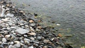 Plan rapproché lisse de pierres sous l'eau transparente propre sur la côte du lac Baïkal banque de vidéos