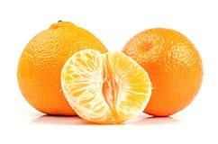 Plan rapproché mûr de mandarines d'isolement sur le blanc Photo libre de droits