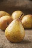 Plan rapproché mûr juteux de poire, dans la perspective de toile de jute, sac Photo stock