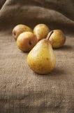 Plan rapproché mûr juteux de poire, dans la perspective de toile de jute, sac Photographie stock