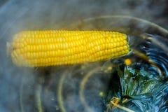 Plan rapproché/maïs thaïlandais de marché de maïs frais bouillant dans le pot photographie stock