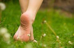 Plan rapproché marchant nu-pieds sur l'herbe, vert gentil photographie stock libre de droits