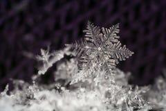 Plan rapproché naturel de flocon de neige Hiver, froid image stock
