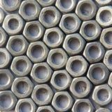 Plan rapproché Nuts Image stock