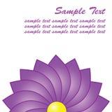 Plan rapproché pourpré de fleur avec l'espace pour le texte Photographie stock libre de droits