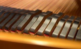 Plan rapproché principal d'amortisseurs de piano Images libres de droits