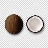 Plan rapproché réaliste d'ensemble de totalité du vecteur 3d et d'icône de noix de coco de moitiés d'isolement sur le fond transp illustration libre de droits