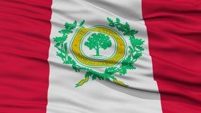 Plan rapproché Raleigh Flag Photo libre de droits
