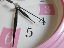Plan rapproché rose d'horloge Photographie stock libre de droits