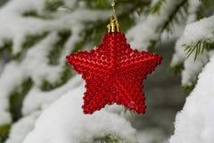 Plan rapproché rouge d'étoile de Noël image libre de droits